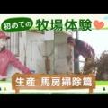 """人気グラビアアイドル""""橋本萌花""""がBOKUJOBで牧場のお仕事にチャレンジ!#5 橋本萌花が初めての牧場体験❤️ ~生産 馬房清掃篇~"""
