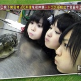 HKT48のおでかけ!、宮脇咲良がフグの白子を食べ一言。AKB48選抜総選挙、指原莉乃の目標は4位?