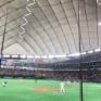 ニャイアンツ応援ネイルで東京ドームへ!