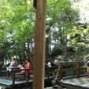 渓流のレストラン