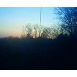 『今日も穏やかな一日でした。』の画像