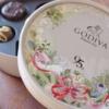 〈パッケージも一目惚れ〉華やかなGDIVA95周年チョコレートと、意外なご縁