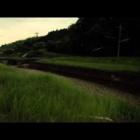 『八塔寺川のホタル (動画)』の画像
