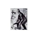 『ダーウィンの進化論は古い!』の画像