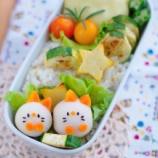 『冷凍サトイモのねこちゃんのキャラ弁』の画像