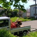 『草刈り!!』の画像