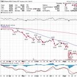 『【トルコ】リラを損切できなかったマヌケな投資家とトルコ株ETFを買い向かったクソダサい欲豚な投資家たち』の画像