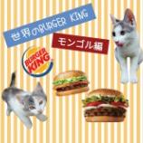 『【世界のバーキン】を食べてみよう!【モンゴル編】』の画像