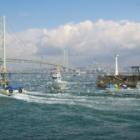 『春の気配。イカナゴ漁と釘煮』の画像