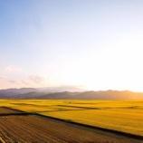 『移住後の一枚。米を刈る日がこんなに早く来るとは・・』の画像