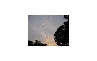 『梅雨の中休み』の画像