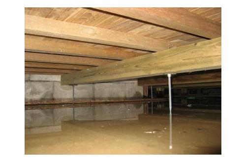 おい、そろそろ床下浸水する・・・・・・・・・・・・・・・・のサムネイル画像