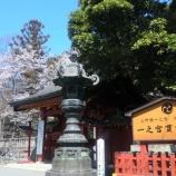 『貫前神社の桜2012 / 群馬 富岡 一之宮』の画像