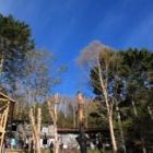 『日本百名山 甲武信岳に行ってきましたょ☆シャクナゲ編』の画像