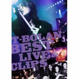 『DVD Review:T-BOLAN「T-BOLAN BEST LIVE & CLIPS」』の画像