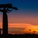 『伝えるインパクト「アフリカの持続可能な開発に向けた産業人材育成」』の画像