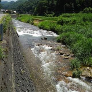 伊南川の釣り blog