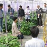 『【農商工連携S】農業体験!!!』の画像