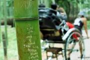 【名勝・京都嵐山】「いいね」ほしさに…竹林で下世話な落書きが横行、地元ボランティアが防止訴えチラシ配り