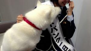 NMB48渡辺美優紀 お父さんにキスされそうになる