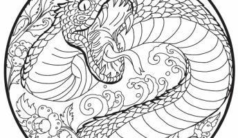 爆殺された『人喰い大蛇の首』と伝わるミイラの正体・・・