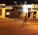 犬人間が目撃される ブラジル(画像あり)