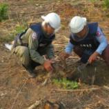 『2015.01.26 不発弾が発見、安全に撤去』の画像