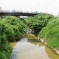 Googleマップに沿って穂谷川の水源まで辿ってみた