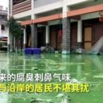 【動画】中国、洪水で冠水した街、水が引かずに今度は「藻」が爆発的に発生!