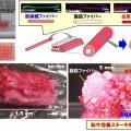 「3Dプリント」で人工肉をつくってみた結果