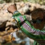 沢山歩けば釣れるイワナ釣りのサムネイル