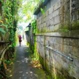 『散歩が観光になる街、ウブド』の画像