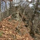 『ハイキング「坂田山」』の画像
