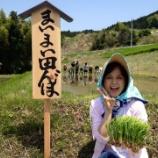 『第3回 まいまい田んぼ De 田植え祭♪』の画像
