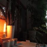 『灯りと 光』の画像