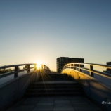 『歩道橋の上からFrom the top of a pedestrian overpass.』の画像