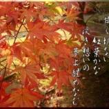 『フォト短歌「浄土の秋」』の画像