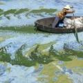 中国の汚染した川の画像が最早絵画レベルwwwwwwww