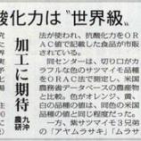『日本農業新聞1面で、「紅芋の抗酸化力は世界級」と』の画像
