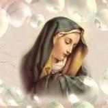 『『平和の石!』 ~マザーメアリーが語る 愛のストーリー』の画像