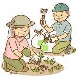 『【クリップアート】シルバー人材-草むしり・草刈・除草作業のイラスト』の画像