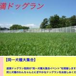 『戸田市道満ドッグラン「同一犬大集合」イベントが開催中』の画像