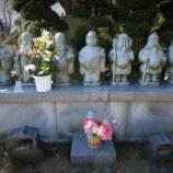 『新春松戸史跡七福神めぐりのご報告』の画像