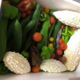 『夏野菜』の画像