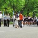 2012年 横浜開港記念みなと祭 国際仮装行列 第60回 ザ よこはま パレード その32(横浜市立みなと総合高校吹奏楽部・チアダンス部)