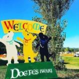 『【DOGFES】BONHEURさまとのコラボパスタが。。。』の画像