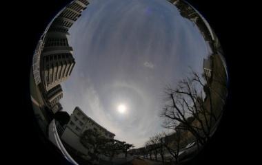 『今日のハロ 2020/02/29』の画像
