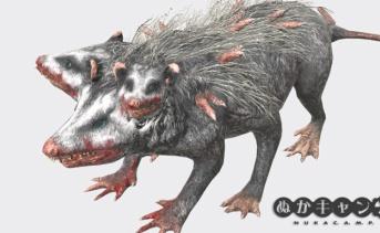 オポッサム(Opossum)