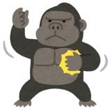 『ゴリラ「あれ?人間って実は喧嘩弱くね?(ウホ?ウホウホウホ?)」』の画像