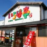 『JAL×はんつ遠藤コラボ企画【松山編】3日め・今治焼豚玉子飯(いろは亭)』の画像